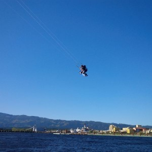 Flying high over the Harbour!